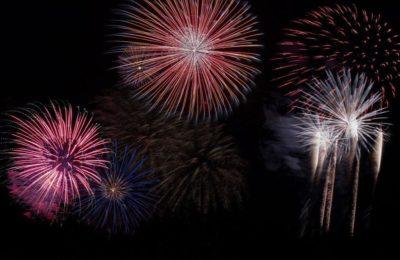 Infoabende – Silvester – mit den Vierbeinern gemeinsam & entspannt ins neue Jahr starten